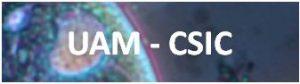 UAM-CSIC